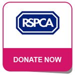 Donate to the RSPCA